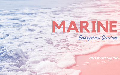 Marine Ecosystem Services
